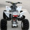 Image for 2007 Honda TRX450