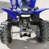 Image for 2011 Yamaha Raptor 250 Lightweight