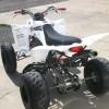 Image for 2009 Yamaha Raptor 350